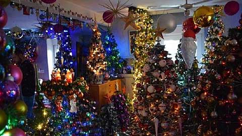 Немецкая пара установила дома более 100 елок.